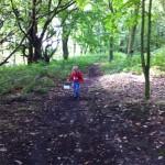 Treeton Wood